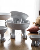 Dylan Kendall Pet & Lifestyle Bowl