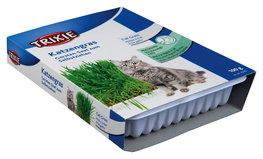 Kattengras Bakje 100gr