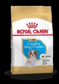 Royal Canin Cavalier King Charles Puppy 1,5kg - Hondenvoer